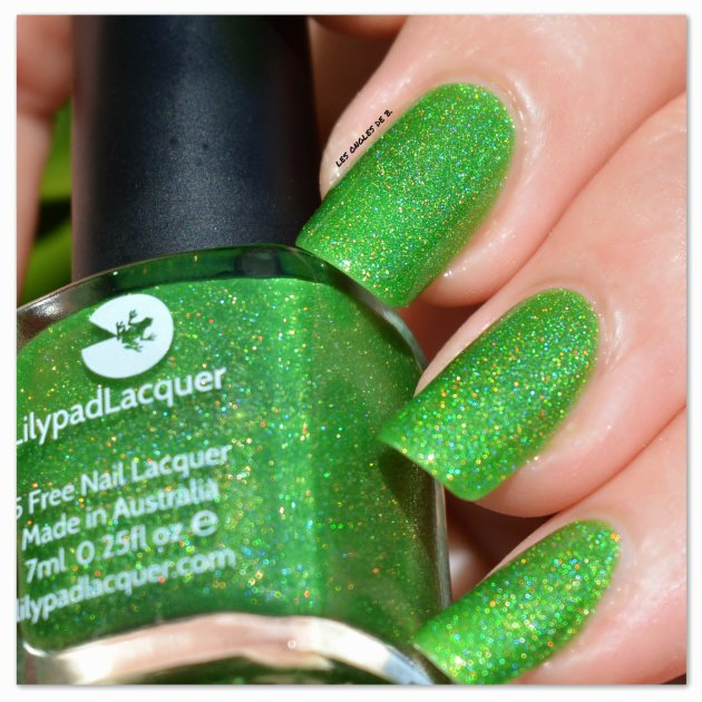 lilypad-lacquer-frog-alive-3
